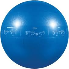 Go-Fit-Pro-exercise-ball